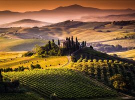Bucci Vacation Series to Tuscany… Round 2!
