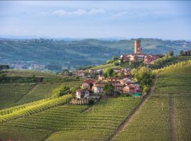 Bucci's Vacation Series to Piedmont!