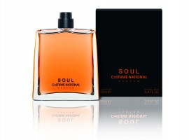 Notes On A Scent: CoSTUME NATIONAL 'Soul'