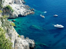 Campania (aka Bucci) is calling…